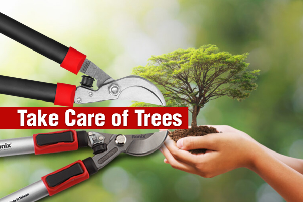 Take care of trees, save the planet